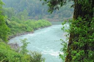 2010 River near Arcata